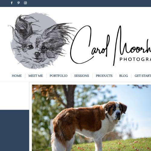 Thumbnail of the https://carolmoorheadphotography.com/ website by Anchor Websites, LLC